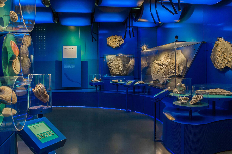 YVONNE RUNDIO Wasserwelten Landesmuseum Hannover